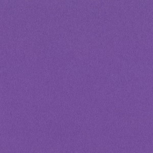 Smoothies - 12 x 12 - Grape Delight  T6-685 ,25 ark