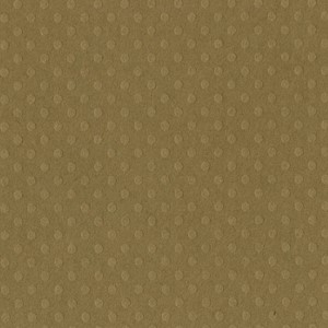 Dotted Swiss - 12 x 12 - Mud Puddle  T8-821 ,25 ark