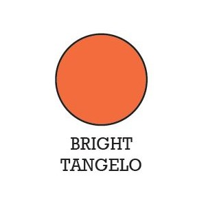 #0 Archival  Ink Pads - Bright Tangelo